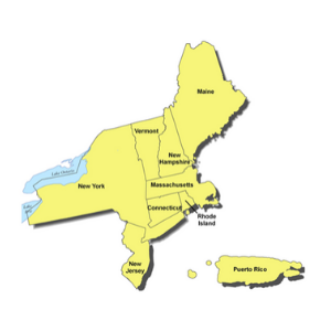 New York NCBW 2020 Census Regions_300 x 300 MAP